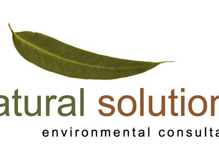 logo design for natural solutions logo brisbane