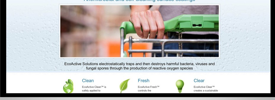 Sunshine Coast Business website for EcoActive Solutions