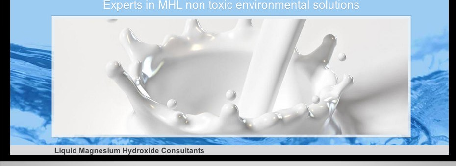 Wordpress business for MHL Consultants, a Sunshine Coast based business specialising in Magnesium Hydroxide Liquid
